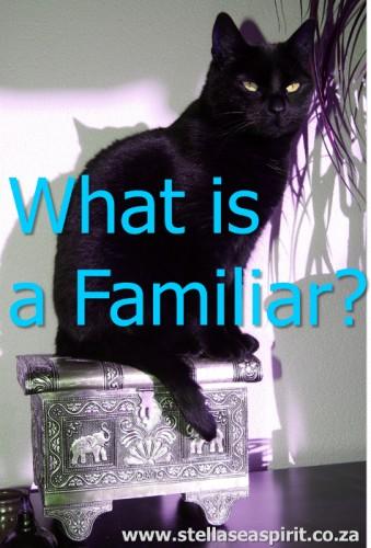 What is a Familiar? | www.stellaseaspirit.co.za